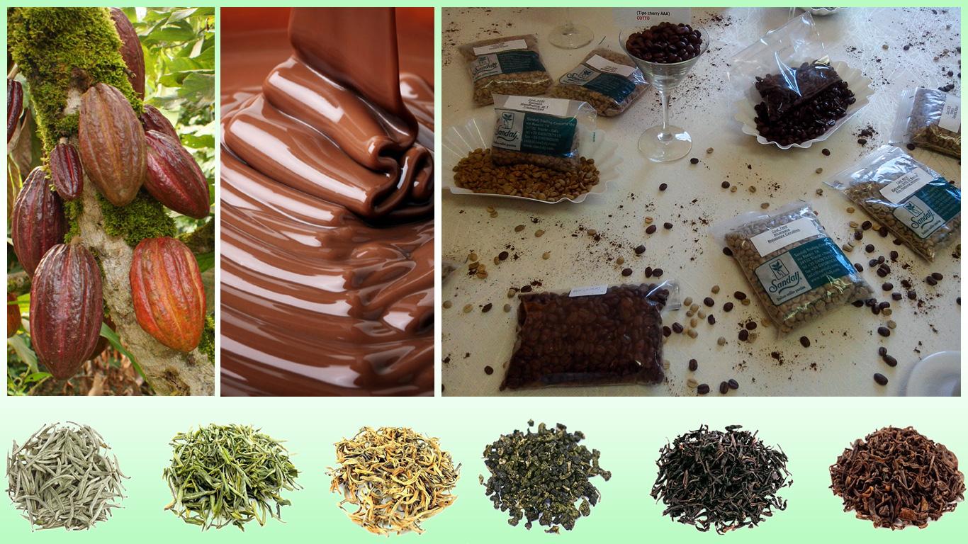 Frutti della pianta di cacao, cioccolata semi di caffè, foglie di tè essiccate